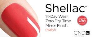 Shellac+banner